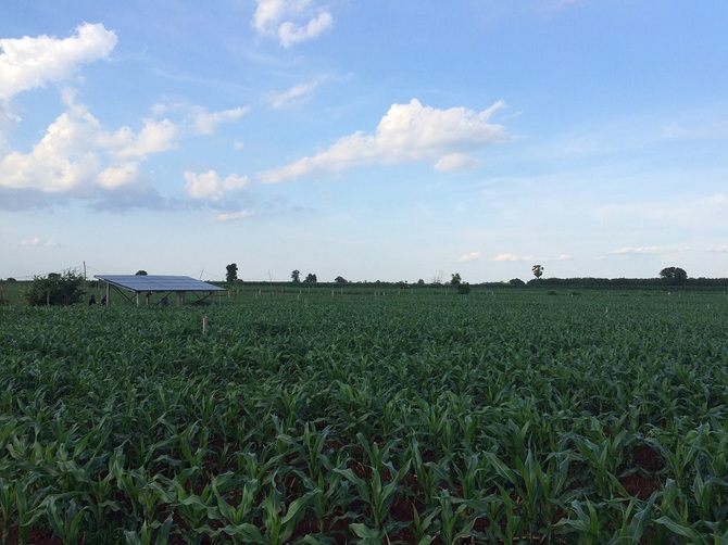 cornfield_with_waterpump_after.jpg